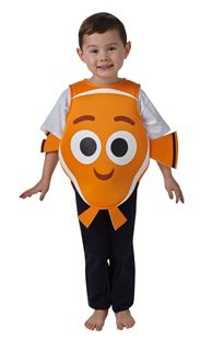 Picture of NEMO