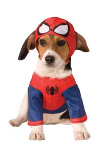 Picture of SPIDERMAN