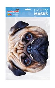 Picture of PUG