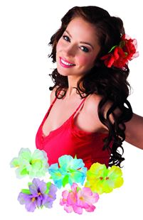 Picture of HAIR ACCESSORY HIBISCUS
