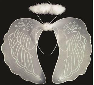 Slika od Krila za anđela s oreolom